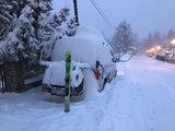 Skidrager voor Towbox V1 montage op deksel_