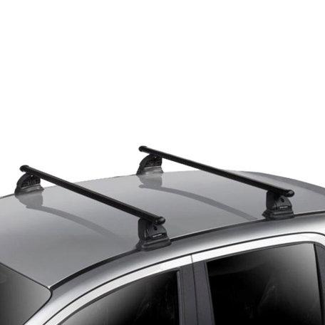Dakdragers Peugeot 207 3/5 deurs hatchback 2006 t/m 2015 geschikt voor Vaste punten/fix points